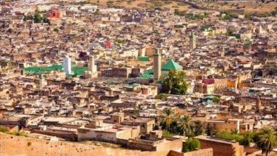 """Photo of """"أفريقيا الأفارقة"""" تجمع فنانى العالم بفاس المغربية"""