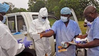 Photo of الصحة العالمية: لا نزال في حرب مع الإيبولا