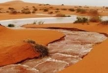 Photo of تساقطات مطرية معتبرة في الحوض الشرقي (تفاصيل)