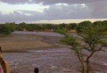 Photo of مقاييس الأمطار في عدة ولايات موريتانية