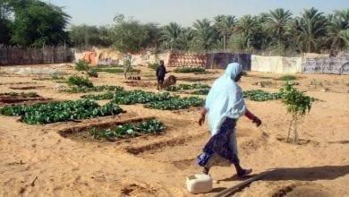 Photo of البنك الدولي يدعم مندوبية (تآزر) بـ 52 مليون دولار