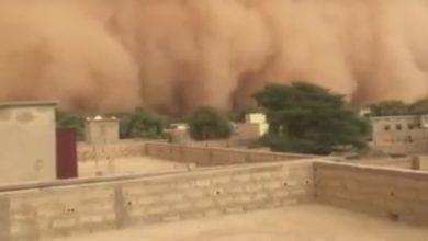 Photo of الأرصاد الجوية تحذر من أسبوع حار ومليء بالعواصف الرملية